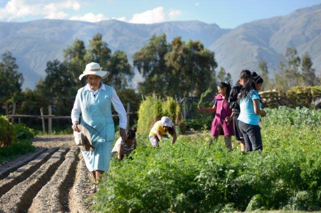 Jugendliche arbeiten in den Gemüsegärten des Kinderheim. (Foto: Florian Kopp/SMMP)